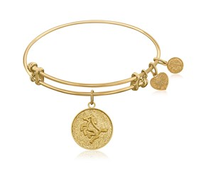 Expandable Yellow Tone Brass Bangle with Horse Symbol